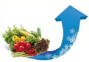 近期持续降温南宁菜价涨 不排除春节期间大幅上涨