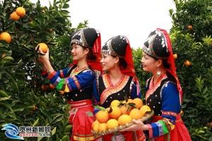 富川脐橙获国家地理标志产品