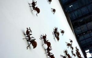 福建漳州现大型蚂蚁雕塑