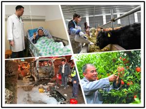 1月19日焦点图:八旬老汉冒险手术 只为照顾108岁老父