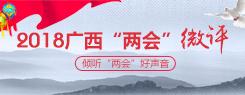 """专题:2018广西""""两会""""微评——倾听""""两会""""好声音"""
