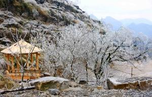 微视频|广西山间冰挂晶莹剔透 美景宛如童话世界