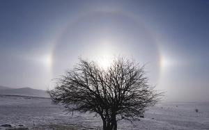 内蒙乌兰布统草原出现日晕景观