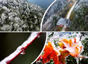 航拍:白雪覆盖群山 九万山保护区现迷人冬日雪景