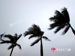 防城港天气阴转多云 大风未减(图)
