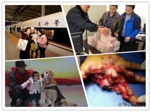 """2月2日焦点图:""""复兴号""""动车首进广西 时速350公里"""