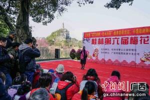 桂林市民游客踏春赏梅