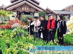 赏郁金香品民俗文化 青秀山春节举办旅游节庆活动
