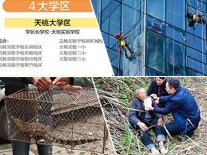 2月23日焦点图:南宁市直属学校划分为四大学区