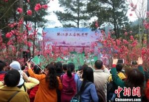 广西环江县第二届桃花节开幕 上万游客踏春赏花