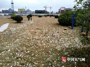 贺州钟山响起春雷 强烈冰雹雨突袭县城20分钟(图)