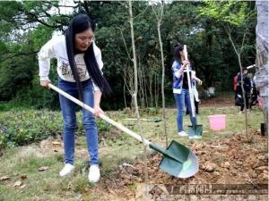 招商银行南宁分行开展2018年公益植树活动