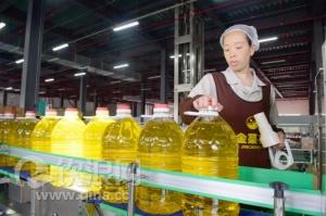 钦州港品牌食用植物油 畅销大西南