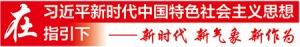 【新时代 新气象 新作为】上林:东成西就雁高飞