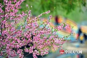 河南浙江等9省冲击30℃ 华南已提前入夏