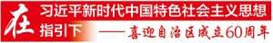 【喜迎自治区成立60周年】广西乡村华丽蝶变