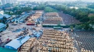 焦点图:柳州市柳北区沙塘镇遭龙卷风袭击