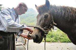 骑马赶圩好拉风 86岁老夫和他的