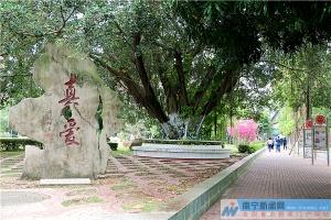 """南宁三中:百廿传承心中梦 """"真·爱""""浇筑文明花"""