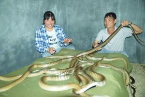 """忻城一对夫妻与蛇""""共舞"""" 引领村民致富(组图)"""
