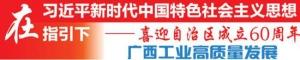 从四家重点企业(项目)看广西工业高质量发展