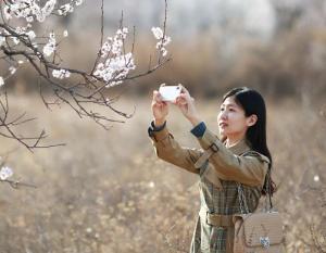 河北内丘:春分时节享春光
