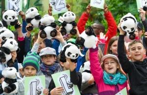 大熊猫园园正式亮相维也纳