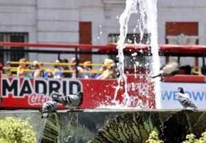 马德里:高温持续