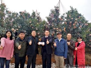 【新春走基层】南泗乡党委书记为农产品代言:我村有好货