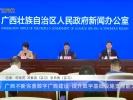 广西不断完善数字政府建设,提升数字基础设施支撑能力