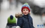 布鲁塞尔:雪中拾趣