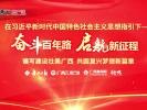 龙州县上龙乡新联村甫茶屯屯长黄江峰谈红军路优化扩建