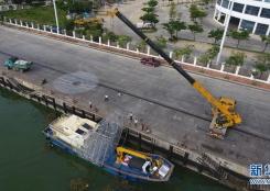 海南三亚:崖州湾生态修复示范初见成效