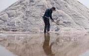 河北黄骅:春盐收获忙