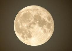 布鲁塞尔:圆月