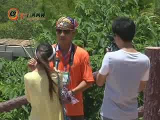 网友参观红树林保护区