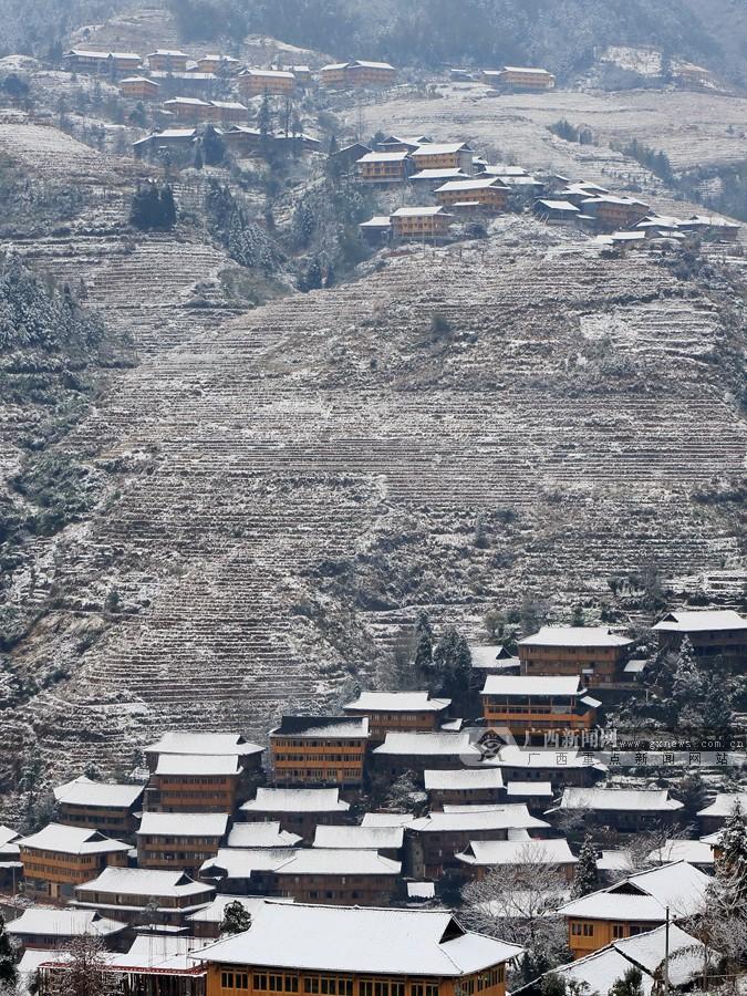 高清:广西龙胜隆林等地迎来皑皑白雪图片