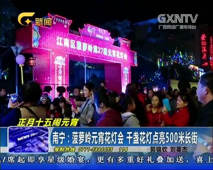 南宁:菠萝岭元宵花灯会 千盏花灯点亮500米长街