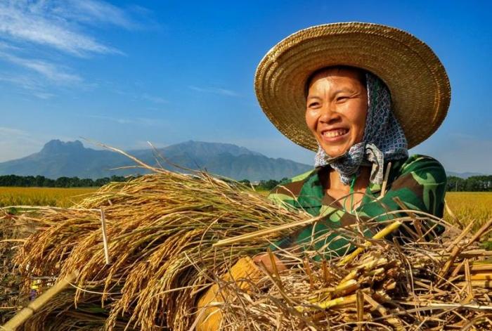 最美广西笑脸征集结束 千幅作品展八桂人民新貌