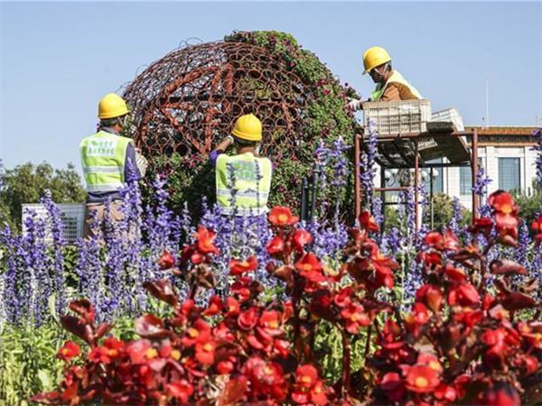 天安门广场国庆花卉开始布置