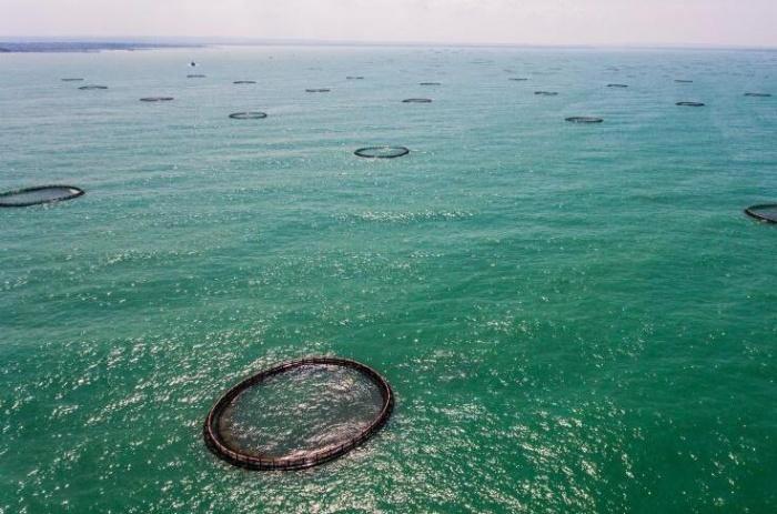 亚洲最大深水网箱养殖基地