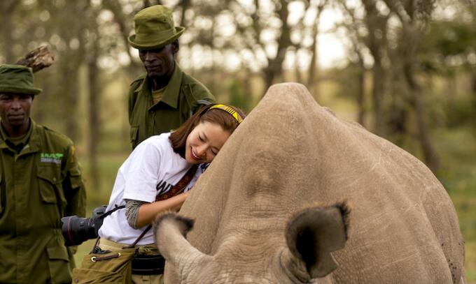 江一燕呼吁保护犀牛 拒绝猎杀买卖