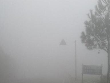 金秀林香路段大雾弥漫