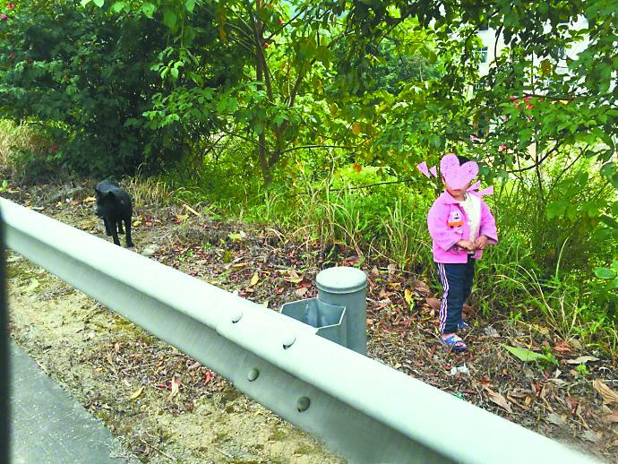 玉林3岁男孩思母心切 高速公路走2公里寻母(图)