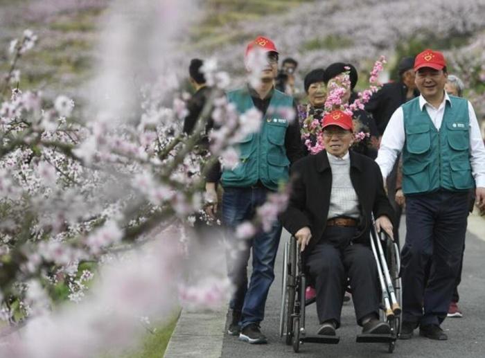 陪伴孤寡老人桃林赏花踏春