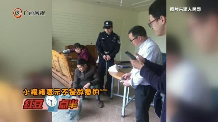 小獾猪闯入居民家偷吃 然后网友被警察萌到了...