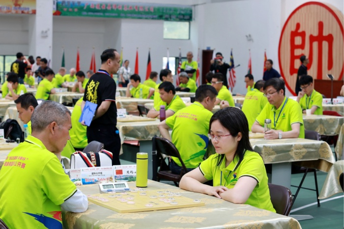 凌云举办象棋国际公开赛 国内外象棋高手云集(图)