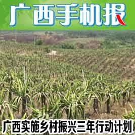 广西手机报5月24日上午版