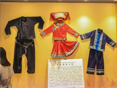探访广西贵港市蒙公民族中学博物馆
