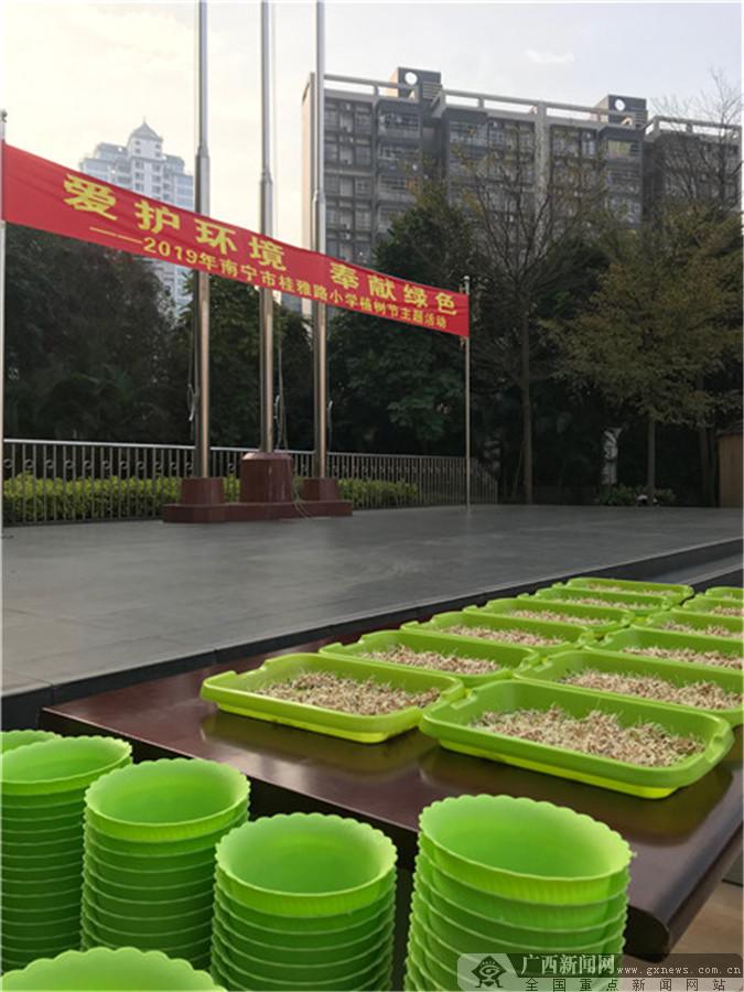 南宁市桂雅路小学:种下一片绿 护苗共成长